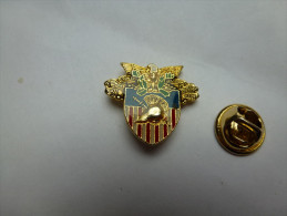 Beau Pin´s , Armée Militaire , Duty Honor Country , Westpoint , USMA , Académie Militaire US - Militaria