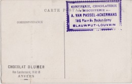 BLAUWPUT-LEUVEN-RECLAMEKAART-CONFISERIE-CHOCOLATERIE-A.VAN PASSEL-ACKERMANS-CHOCOLAT-BLUMER-WIERTZ-ZIE 3 SCANS-ZELDZAAM - Leuven