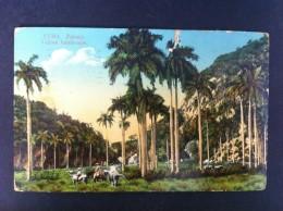 CUBA PAISAJE POSTAL CIRCULADA A VALENCIA 1915 - Postales