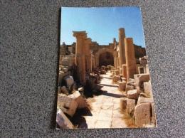 Libya. Leptis Magna - Libye