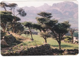 Yemen: Un Paysage De AL-MAHWEET - A Landscape  - (Y.A.R.) - Yemen