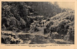 "04926 ""A TIPICAL SCENE OF NEW ZEALAND 'S CRYSTAL MOUNTAIN STREAMS ......"" ANIMATA. CART. POST. ORIG. NON SPEDITA. - Nuova Zelanda"