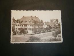 DUINBERGEN  - Villas Les Azalées, Zeesymfonie, Welkom EtFlamande - België