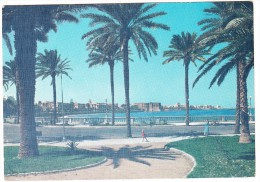 Tripoli - View On The Sea Front / Veduta A Mare - 1965 - (Libya / Libia) - Libië