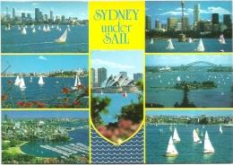 SYDNEY-UNDER SAIL - Sydney