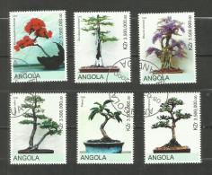 "Angola Année 2000 ""Bonsaïs"" - Angola"