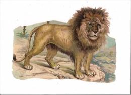GRAND CHROMO DECOUPI GAUFFRE - LION - - Animals