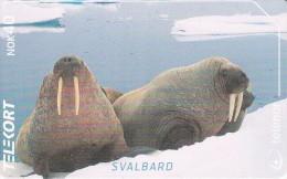 Svalbard - Walruss - N-234