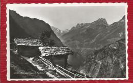 SUISSE - Aux Environs De Finhaut - VS Valais