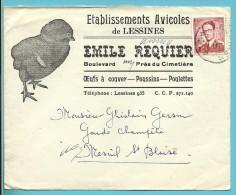"""925 Op Brief Met Hoofding """"ETABLISEMENT AVICOLES DE LESSINES / EMILE REQUIER / OEUFS-POUSSINS-POULETTES"""" - 1953-1972 Lunettes"""