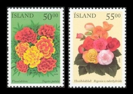 Iceland 2004 Mih. 1051/52 Summer Flowers MNH ** - Unused Stamps