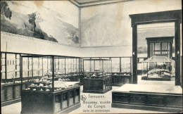 Tervuren : Nouveau Musée Du Congo - Tervuren