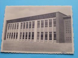 Zusters Der Christelijke Scholen Parochie Van O.L.Vrouw Meisjesschool ( Thill ) Anno 19?? ( Zie Foto Voor Details ) !! - Nijlen
