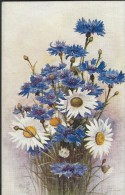 FLEURS - Détaillons Collection - A Voir - 11158 - Fleurs