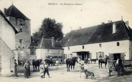 70 SEVEUX Très Animée, La Ferme Du Chateau ,personnages Chevaux Chien - France