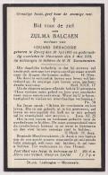 DP Zulma BALCAEN - Debackere - Roncq - Moorsele - 1865 / 1933 - Timbres