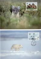 1993 - Finlande - 2 Cartes Maximum - Protection De La Nature - Le Renard Arctique - Tp N° Yvert 1167 Et 1168 - Maximum Cards & Covers
