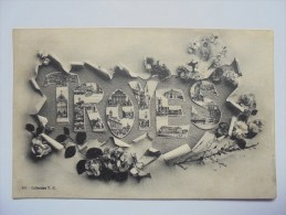 C P A ANIMEE  ANNEES 1900  MULTI VUES DE TROYES - Troyes