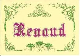 PRENOMS / RENAUD /  CPM 1980 / - Prénoms