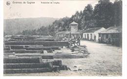 Environs De Cugnon Ardoisiére De Linglay - Bertrix