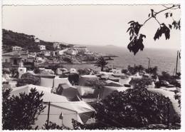 """SANARY-SUR-MER (Var) Port Issol-Camping """"à La Halte""""-Tente-Caravane-Photo Descombey-Caujolle, Marseille-GRAND FORMAT - Sanary-sur-Mer"""