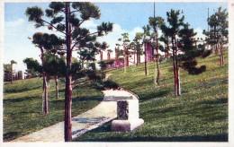 Italie  Trieste  Parc Rimenbranza - Trieste