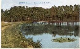 AMIENS  :  Promenade De La Hotoie  , - Amiens