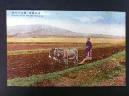 OPERATION OF FARMER CHINESE - China