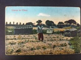 GRAVES IN CHINA - China