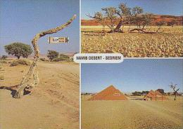 SESRIEM       H3       3 Vues.Namib Desert .Sesriem - Namibie