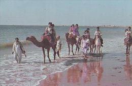 Karachi       H5       Hawks Bay Karachi - Pakistan