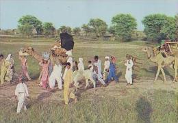 Punjab      H8       Travelling Carvan Of Gypsies In Punjab - Pakistan