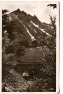 Le MONT-DORE - Pic Du Sancy Et Pont De La Dore - Auvergne