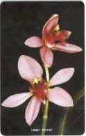 Sierra Leone - SLNTC - Orchid 3 - Urmet, Mint