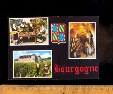 BOURGOGNE  Vigne Vignes Vignoble  Cave Dégustation Vin - France