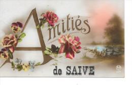 Saive - Amitiés De Saive - Ed: ROTO 5673 - Circulé. - Blegny