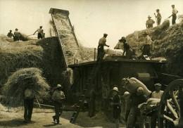 France Agriculture Battage Du Blé Ancienne Photo 1938 - Professions