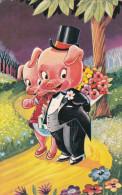 Varken Varkens Cochon Cochons  Pig Swine Zwijn Zwijnen Wedding Huwelijk Marriage Vermählung Heirat - Cerdos