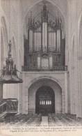 Thématiques 85 Vendée Luçon La Cathédrale La Chaire Sculptée Par Vallet Et Les Grandes Orgues De Cavaillé Coll - Lucon