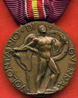 MEDAGLIA BENEMERENZA VOLONTARI O.M.S. - Médailles & Décorations