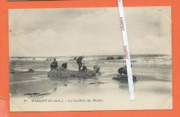 WISSANT -  La Cueillette Des Moules - Wissant
