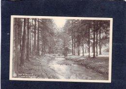 59381    Belgio,   Salut  De Moresnet,  La  Vallee De La  Gueule,   NV - Plombières
