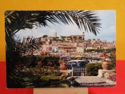 France > [06] Alpes Maritimes> Cannes - Non Circulé, Un Clic Sur La Photo, - Cannes