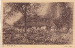 Pede - Ste Anne Ferme (cliclé A. Hallut) - België