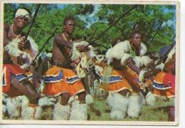Afrique - Swaziland : Sibaka Danc Swazi Warriors - Swaziland