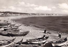 FIGUEIRA DA FOZ  PORTUGAL (DIL173) - Portugal