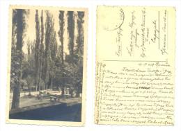 VRLIKA CESMA YEAR 1938 VERY RARE - Croatia