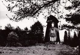 Grote Kaart Sint Pieters Lille Windmolen Oude Molen Windmill Mouin A Vent - Lille