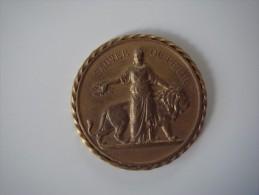 Médaille Bronze Sauver Ou Périr Socièté Française De Sauvetage 1879 - Unclassified