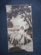 IMAGE Pieuse Ancienne  - Jésus Et Son Troupeau - 1932 - VERSAILLES (NB) - Religion & Esotericism